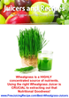 Wheatgrass Juicer Reviews - 5 Best Electric and Manual Wheatgrass...