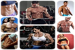 Visual Impact Muscle Building Review   How To Gain Muscle Mass Quickly