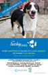 Lucky Dog Animal Rescue and the Florence Area Humane Society Present a...