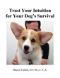 Trust Your Intution Kindle Edition Book Cover