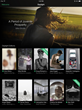 Daylight Launches Immersive Gallery-Like Experience for Contemporary...
