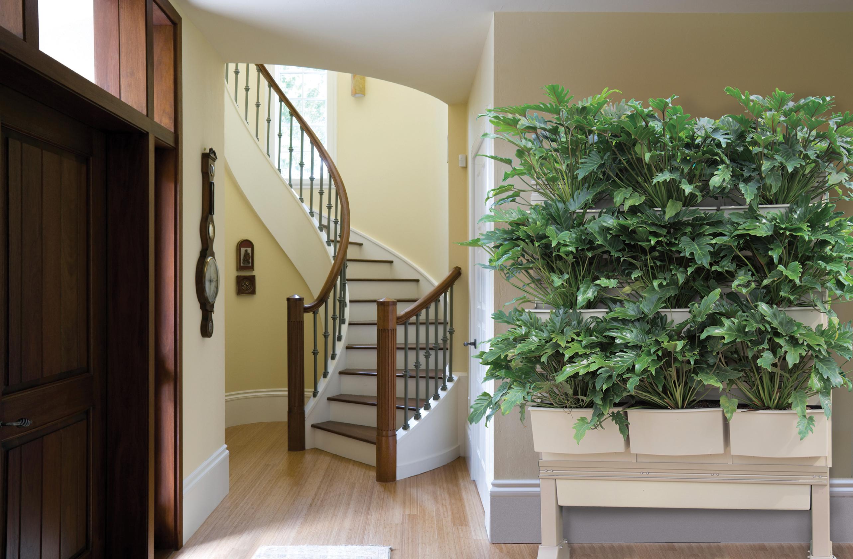 Living Walls Of Greenery Greet Visitors Escaping Cold At
