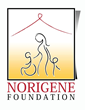 Noriegene Foundation Logo