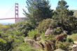 Bay Area Discovery Museum to Celebrate Earth Day With Performances & Art Projects on Saturday, April 19