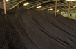 New Biomass Energy Launches Joint Venture with Solvay for Expansion of...