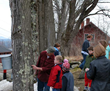 Spring Brings Return of New Hampshire Maple Experience to The Rocks...