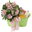 Spring Scents gift from Flowers24Hours