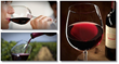 benefits of red wine book