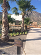 Danzante Bungalow, a private beachfront villa that allows guests to sleep under the stars, is the newest addition to the three-year old Villa del Palmar at the Islands of Loreto.