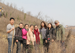 iAbrasive and Henan Hengxin Band Together for Tree Plantings
