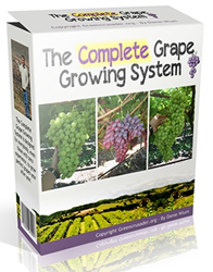 the complete grape growing system free download