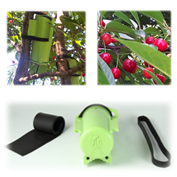 BugVibes™ Cherry - Organic Pest Control Protects Your Cherries from Japanese Beetles, Robins, Netting, and More!