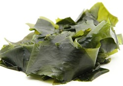 benefits of seaweed download