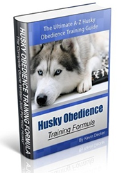 husky obedience training formula pdf