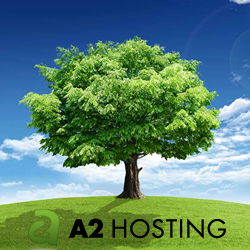 A2Hosting Review & Rating