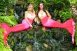 No Shoes, No Legs, No Problem! For the First Time Ever, Mermaids Visit the South Carolina Aquarium