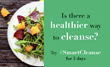 "Announcing ""Smart Cleanse"" a Monday-Friday whole food meal plan for more energy & focus"