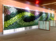 gsky, green wall, versa green wall, vertical garden, living wall