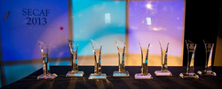 picture of trophies from 2013 SECAF awards