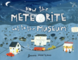 How the Meteorite Got to the Museum - Blue Apple Books