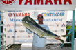 FineAwards.com Provides Crystal Trophies at the Yamaha Contender Miami...