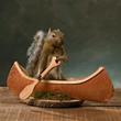 Canoeing Squirrel