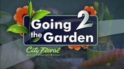 City Floral Garden Center | Going 2 The Garden Video Segments  on KWGN | Denver, CO
