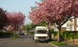 Hire Movers in Los Angeles at Affordable Prices During Spring