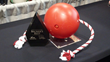 New Tuggo Dog Toy Helps to Save Owners That Are Spending over $58 Billion in 2014