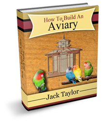 how to build an aviary review