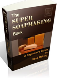 the super soap making book review