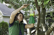 Break the stink bug lifecycle with the RESCUE!® Stink Bug Trap