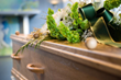 No Medical Exam Life Insurance - How to Cover Burial Expenses?