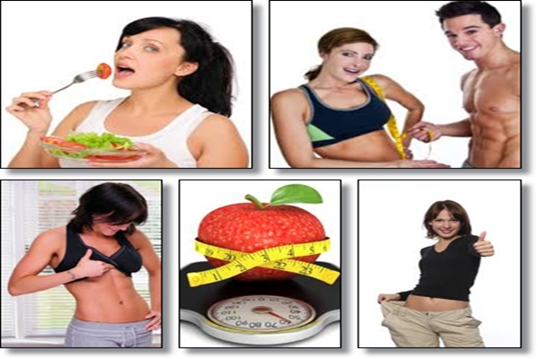 Xtreme fat loss diet plan free ebook