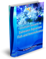 ultimate secrets to saltwater aquarium fish and invertebrates review