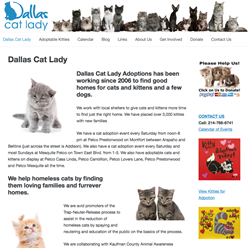 cat adoptions dallas
