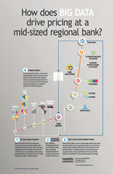 How Big Data Drives Pricing at Banks Infographic