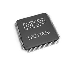 LPC11E60