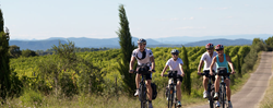 Discover France's bicycle tours through blossoming French vineyards and along warm Mediterranean coastlines offer travelers the perfect temperate, active vacation without the summer crowds.