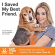 Actress Denise Richards of ABC's 'Twisted' Joins Best Friends...