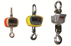 Adam Equipment's Crane Scales