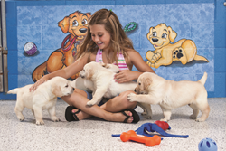 Puppy hugging at Southeastern Guide Dogs in Palmetto, Florida