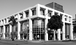 TRIXMEDIA's Offices in Beverly Hills, CA