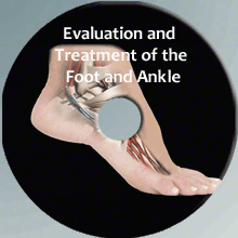 PT Online Continuing Education Course on the Foot and Ankle