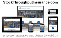 Stock Throughput Insurance Quotes