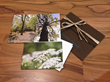 """Earth Friendly Collection"" of Prints/Notecards from AngsanaSeeds Photography"