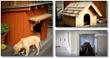 easy build dog house plans