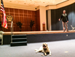 National Veterinary Cancer Registry Hosts Lone Survivor Marcus...