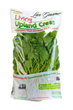 Live Gourmet's Living Upland Cress