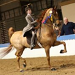 Jordyn Izgrigg riding Ravishing Man (2014 Tampa Charity Horse Show / Saddleseat Equitation Grand Champion)
